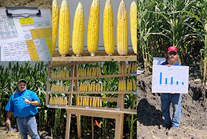 Scenes from Corn College